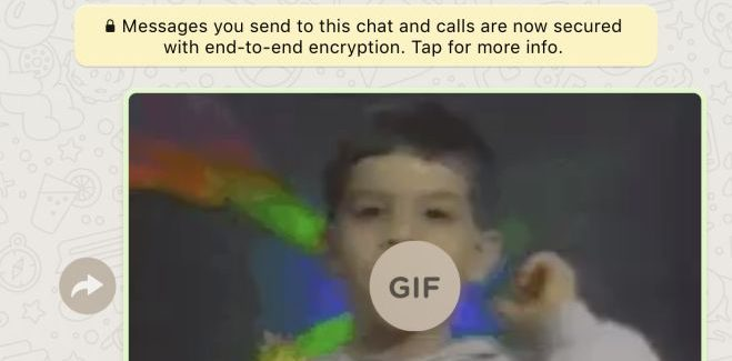 How to add GIF Images to your Whatsapp conversation on iOS & Android